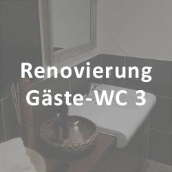 GW3-Icon